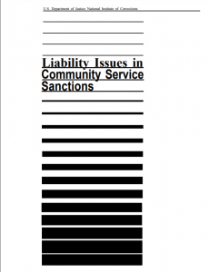 Liability Issues in Community Service Sanctions cover