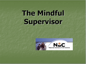 The Mindful Supervisor:  Cognitive Principles in Staff Supervision Cover