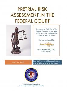 Pretrial Risk Assessment in the Federal Court for the Purpose of Expanding the Use of Alternatives to Detention Cover