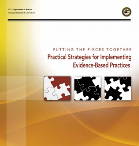 Putting the Pieces Together: Practical Strategies for Implementing Evidence-Based Practices Cover