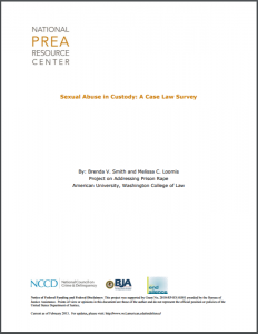 Sexual Abuse in Custody: A Case Law Survey Cover