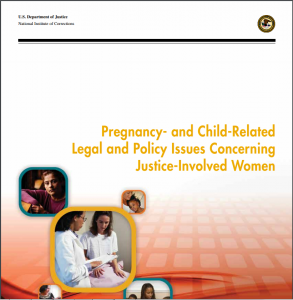 Pregnancy- and Child- Related Legal and Policy Issues Concerning Justice-Involved Women Cover