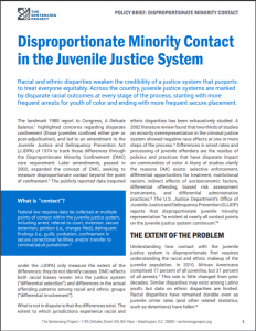 Disproportionate Minority Contact in the Juvenile Justice System Cover