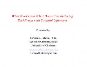 What Works and What Doesn't in Reducing Recidivism with Youthful Offenders Cover