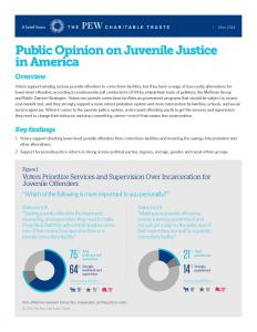Public Opinion on Juvenile Justice in America Cover