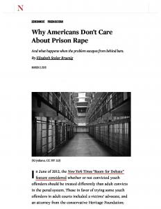 Why Americans Don't Care About Prison Rape And What Happens When the Problem Escapes from Behind Bars Cover