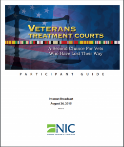 Veterans Treatment Courts cover