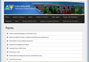 Colorado of Department of Human Services Youth Services Forms cover