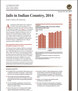 Jails in Indian Country, 2014 Cover