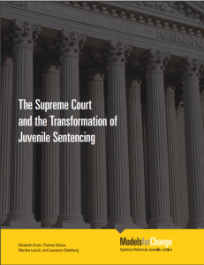 › The Supreme Court and the Transformation of Juvenile Sentencing [and Accompanying Briefs] cover