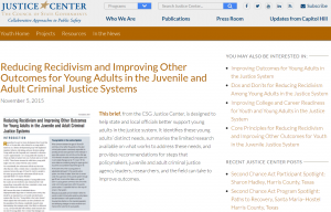 Reducing Recidivism and Improving Other Outcomes for Young Adults in the Juvenile and Adult Criminal Justice Systems cover
