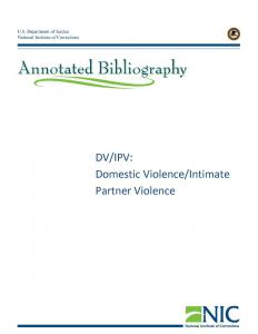 DV/IPV: Domestic Violence/Intimate Partner Violence cover