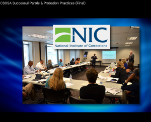 Successful Parole and Probation Practices Cover