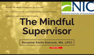 The Mindful Supervisor Image