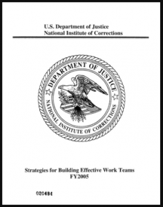 Strategies for Building Effective Work Teams Cover