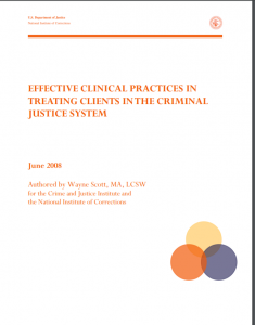 Effective Clinical Practices in Treating Clients in the Criminal Justice System cover