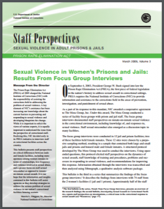 Sexual Violence in Women's Prisons and Jails: Results From Focus Group Interviews Cover