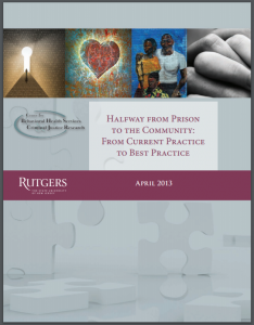 Halfway from Prison to the Community: From Current Practice to Best Practice Cover