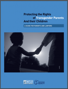 Protecting the Rights of Transgender Parents and Their Children: A Guide for Parents and Lawyers Cover