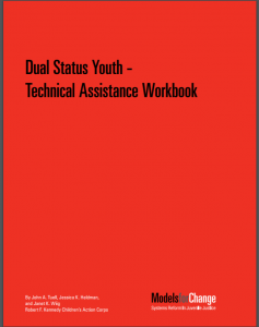 Dual Status Youth – Technical Assistance Workbook Cover