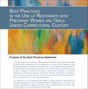 Best Practices in the Use of Restraints with Pregnant Women Under Correctional Custody Cover