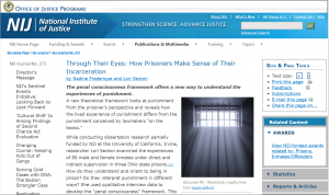 Through Their Eyes: How Prisoners Make Sense of Their Incarceration Cover