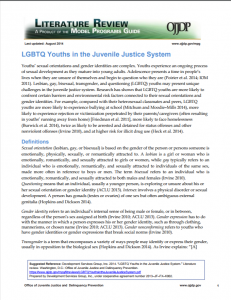 LGBTQ Youths in the Juvenile Justice System Cover
