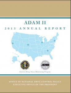 ADAM II 2013 Annual Report Cover