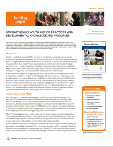 Strengthening Youth Justice Practices with Developmental Knowledge and Principles cover