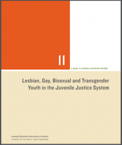 Lesbian, Gay, Bisexual and Transgender Youth in the Juvenile Justice System Cover