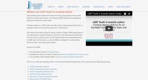 LGBT Youth in Juvenile Justice: Creating Agency Policies for an Equitable System Webinar cover