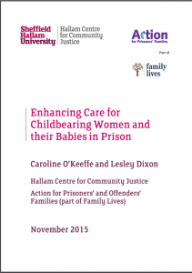 Enhancing Care for Childbearing Women and their Babies in Prison cover