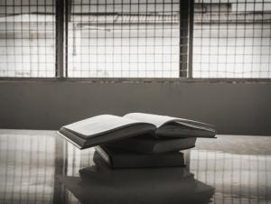 Prison research books